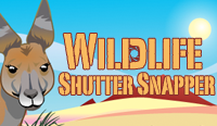 Project: Wildlife Shutter Snapper